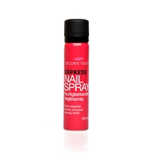Delicate Touch Express Nail Spray Quick Dry