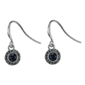 Dangle Crystal Earring