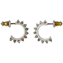 Silver Plated Studded Earrings