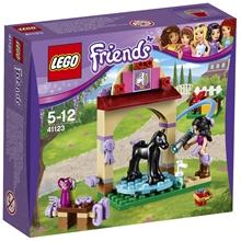 41123 LEGO Friends Fölets tvättstation