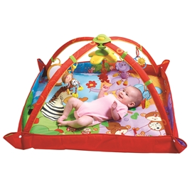 Tiny Love Babygym Move and Play