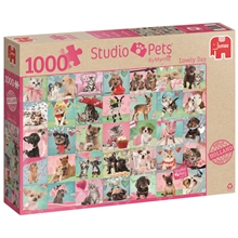 Pussel Studio Pets Lovely Day 1000 bitar