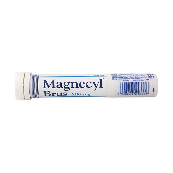 magnecyl brus 500 mg