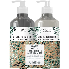 Minty Choc Chip Mini Treat Box