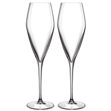 2 st/paket - LB Atelier champagneglas Prosecco 2-pack