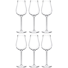 Paris bouquet Champagneglas 6-pack